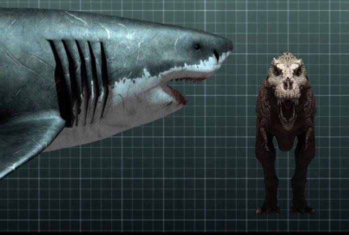 самой большой акулы мегалодон