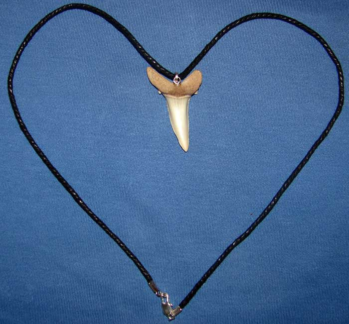 Заказать кулон с зубом древней акулы